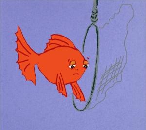 goldfishnet